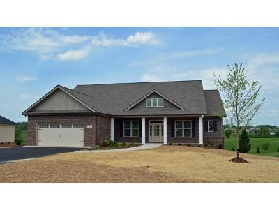 Jonesborough Single Family Home For Sale: 1200 Peaceful Dr