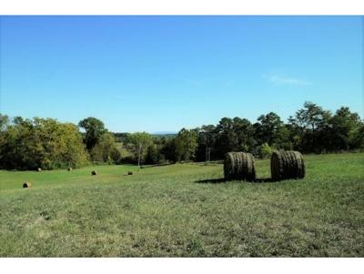 Greene County Residential Lots & Land For Sale: 3300 Marvin Rd.