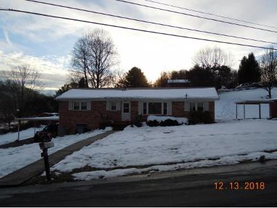 Damascus, Bristol, Bristol Va City Single Family Home For Sale: 23504 Larwood Ln