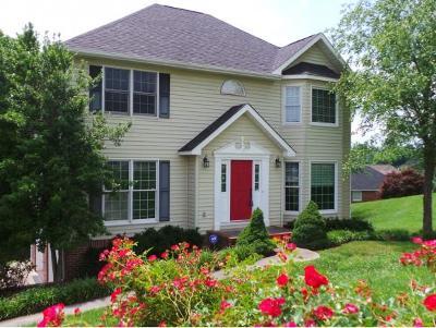 Kingsport Single Family Home For Sale: 1208 Hillhurst Circle