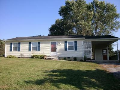 Abingdon Single Family Home For Sale: 27024 Rivermont Drive
