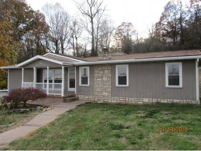 Kingsport Single Family Home For Sale: 562 Weeks Ave