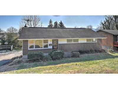 Kingsport Single Family Home For Sale: 557 W Stone Dr