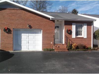 Johnson City TN Condo/Townhouse For Sale: $110,000