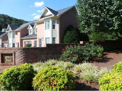 Kingsport Condo/Townhouse For Sale: 101 Ashley Oaks Private Drive #101