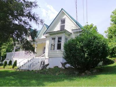 Chuckey Single Family Home For Sale: 330 Rheatown Road