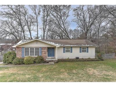 Greeneville Single Family Home For Sale: 214 Pinecrest Dr