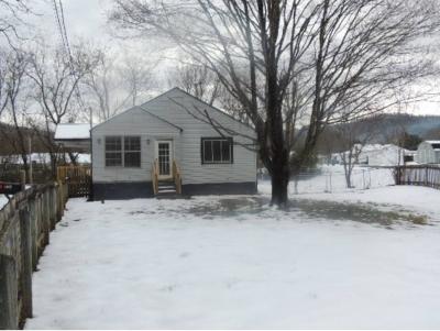 Erwin Single Family Home For Sale: 256 Elliott Ave