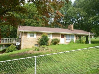 Blountville Single Family Home For Sale: 446 Harr Trail Road