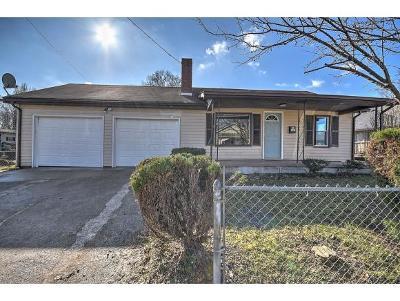 Kingsport Single Family Home For Sale: 2165 Steadman Street