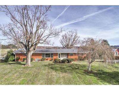 Jonesborough TN Single Family Home For Sale: $225,000