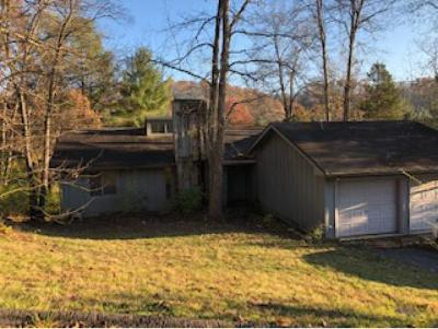 Damascus, Bristol, Bristol Va City Single Family Home For Sale: 130 Shadowhill Lane