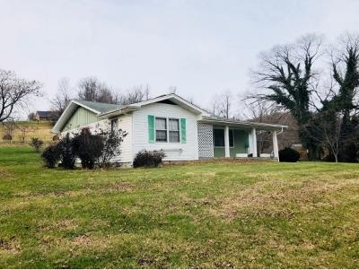 Jonesborough Single Family Home For Sale: 987 Hairetown Rd