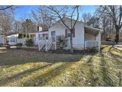 Greeneville Single Family Home For Sale: 1216 Robinhood Road