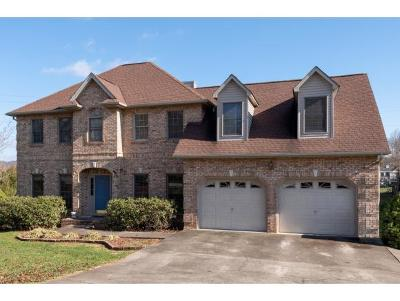 Blountville Single Family Home For Sale: 248 Southridge