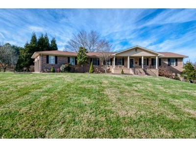 Bristol Single Family Home For Sale: 23368 Highpoint Rd