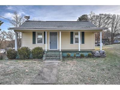 Bristol Single Family Home For Sale: 1511 Georgia Ave