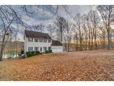 Piney Flats Single Family Home For Sale: 2830 Devault Bridge Road