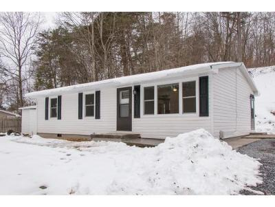 Damascus, Bristol, Bristol Va City Single Family Home For Sale: 9147 Reedy Creek Rd