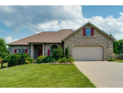 Kingsport Single Family Home For Sale: 1009 Allandale Circle