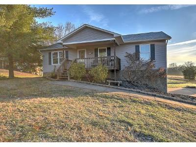 Single Family Home For Sale: 90 Brian Circle