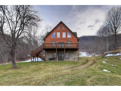 Carter County Single Family Home For Sale: 264 The River Private Drive