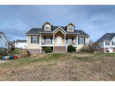 Johnson City Single Family Home For Sale: 103 Drewtanner Ln