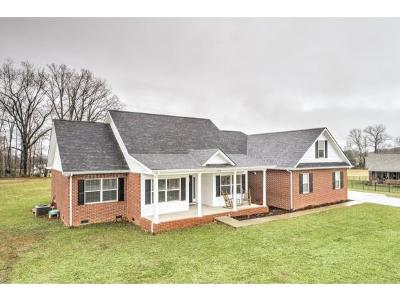 Greeneville Single Family Home For Sale: 304 Saddle Ridge Court
