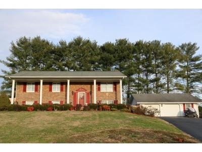 Blountville Single Family Home For Sale: 206 Fain Road