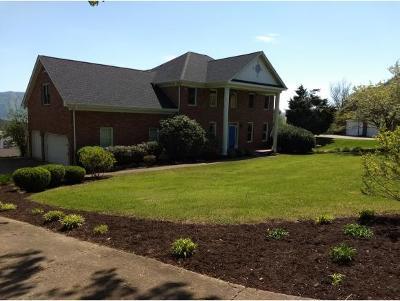 Kingsport Single Family Home For Sale: 1008 Wellington Blvd.