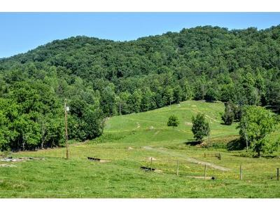Hawkins County Residential Lots & Land For Sale: 3903 Stanley Valley Road