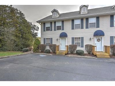 Johnson City Condo/Townhouse For Sale: 11 Pepper Ridge #11