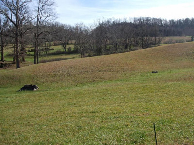 Greene County Residential Lots & Land For Sale: TBD Old Snapps Ferry Rd.
