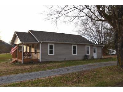 Blountville Single Family Home For Sale: 734 Big Hollow Rd