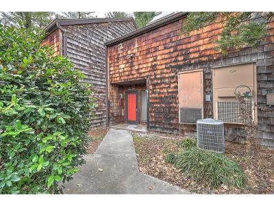 Johnson City Condo/Townhouse For Sale: 115 Beechnut St #H8