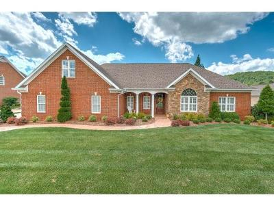 Kingsport Single Family Home For Sale: 121 Golf Ridge Drive