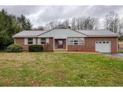 Bristol VA Single Family Home For Sale: $139,985