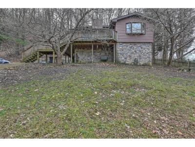 Blountville Single Family Home For Sale: 583 Rocky Branch Rd