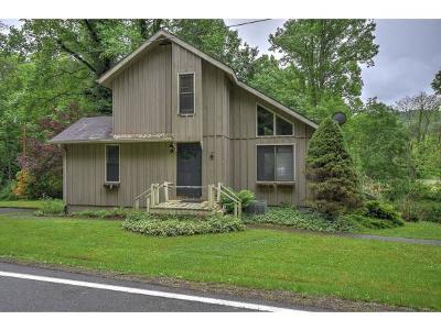 Erwin Single Family Home For Sale: 2040 Spivey Mountain