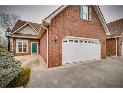 Kingsport Condo/Townhouse For Sale: 120 Hampton Green