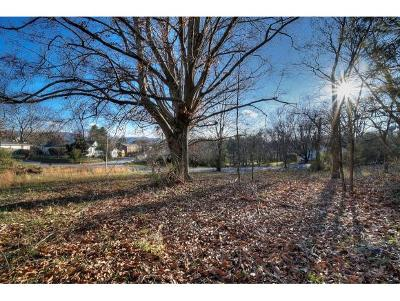 Johnson City Residential Lots & Land For Sale: 1710 Skyline Dr