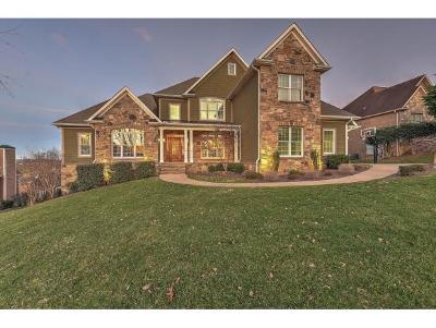Johnson City Single Family Home For Sale: 1025 Willows Trace Dr.