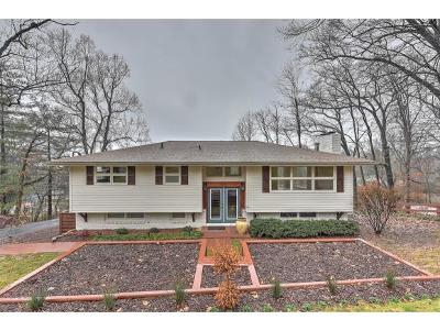 Kingsport Single Family Home For Sale: 2306 Mountain Drive