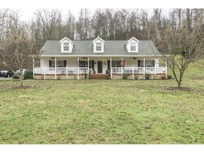 Abingdon Single Family Home For Sale: 23520 Dons Place