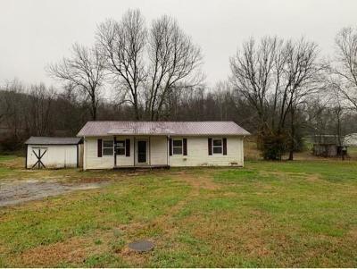 Greeneville Single Family Home For Sale: 909 Hartman Lane