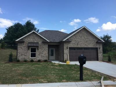 Gray Single Family Home For Sale: 169 Ripple Falls