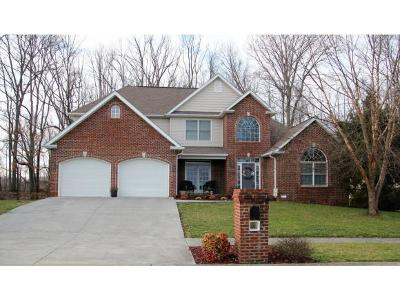 Johnson City Single Family Home For Sale: 303 Michaels Ridge Blvd