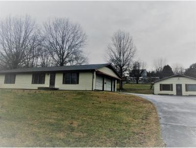 Greeneville Single Family Home For Sale: 3370 Newport Hwy