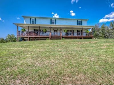 Bulls Gap Single Family Home For Sale: 684 Pleasant Hill Rd