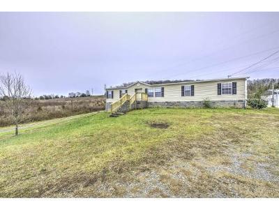 Limestone Single Family Home For Sale: 617 Bailey Bridge Road